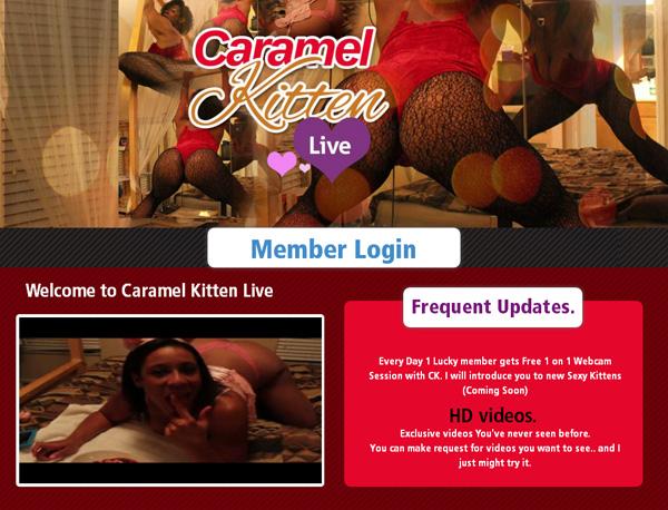 Caramel Kitten Live Member Discount